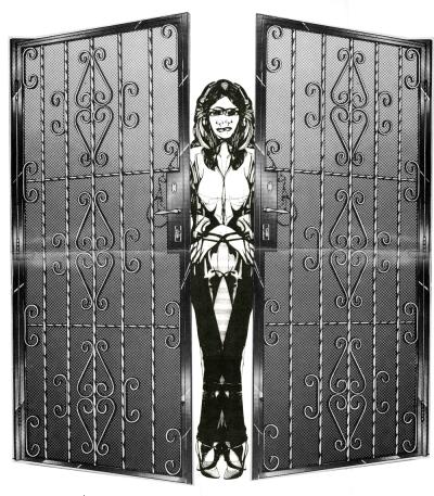 Decorative Protection III by Bari Ziperstein